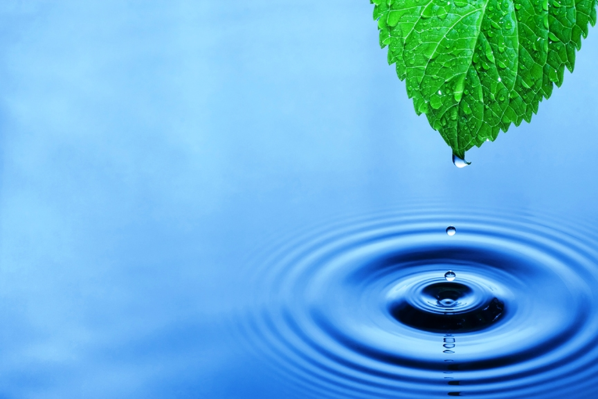 mindfulnessmentalhealth